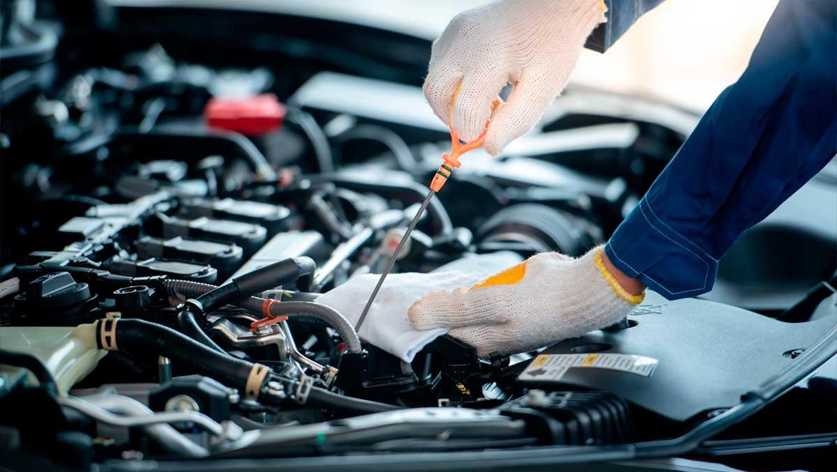 mantenimiento-del-coche-en-verano-werther-iberica